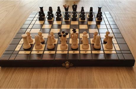 על שחמט וכלכלת המשפחה